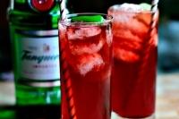 Классический джин с тоником